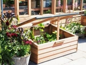 A beautiful baby cold frame greenhouse sitting on back porch with flowers growing in box.