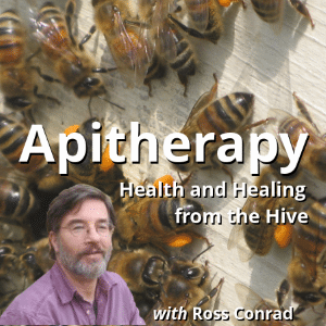 Picture of Ross Conrad, organic beekeeper and teacher of Apitherapy with a group of black and yellow bees on light colored wood background.